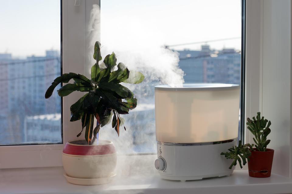 加湿器の種類と正しい使い方