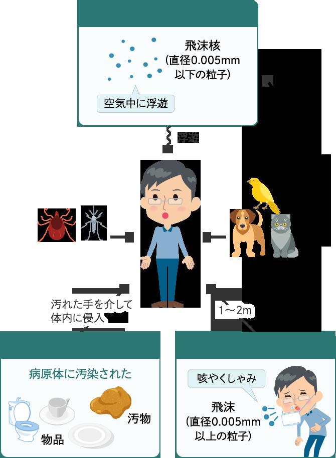 接触感染→主に口から体内に侵入 空気感染→浮遊 飛沫感染→1~2m 動物 昆虫